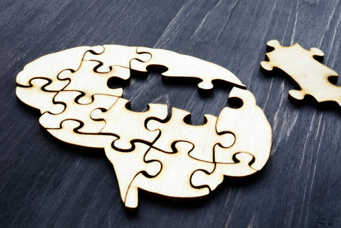 Wooden puzzle in the shape of a brain with one piece removed